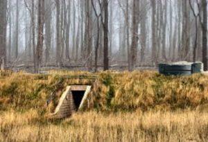 The Boy Bunker1